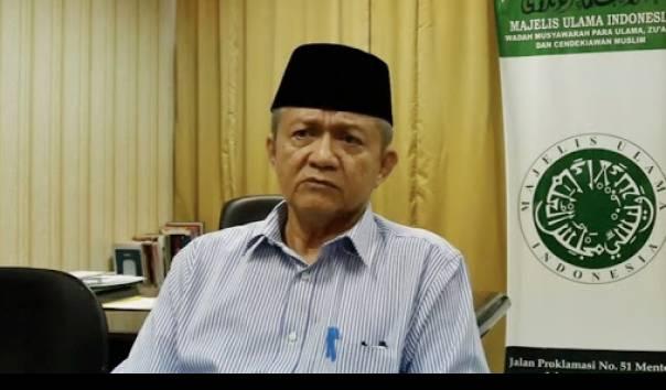 Wakil Ketua Umum MUI Anwar Abbas. Foto: Istimewa